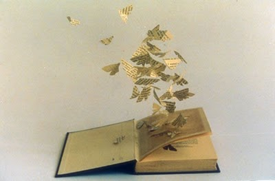 Resultat d'imatges de libros con mariposas
